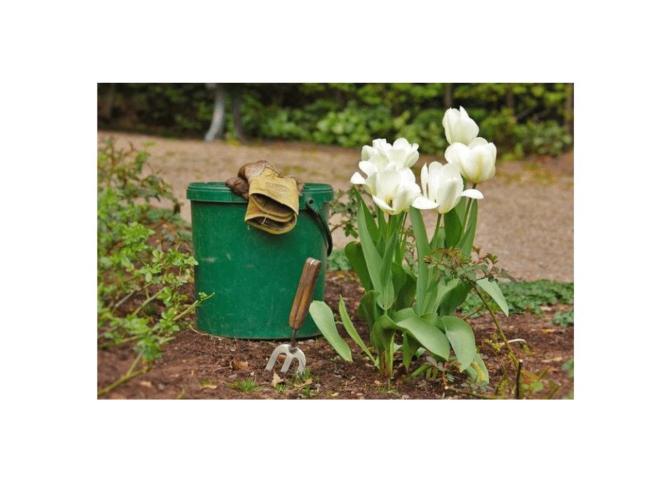 Travaux Printemps – entretien jardin
